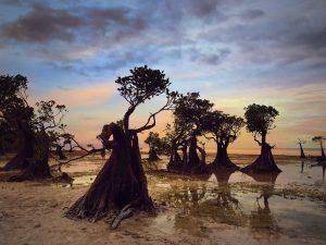 Lokasi syuting Film Susah Sinyal, Pantai Walakiri di Sumba