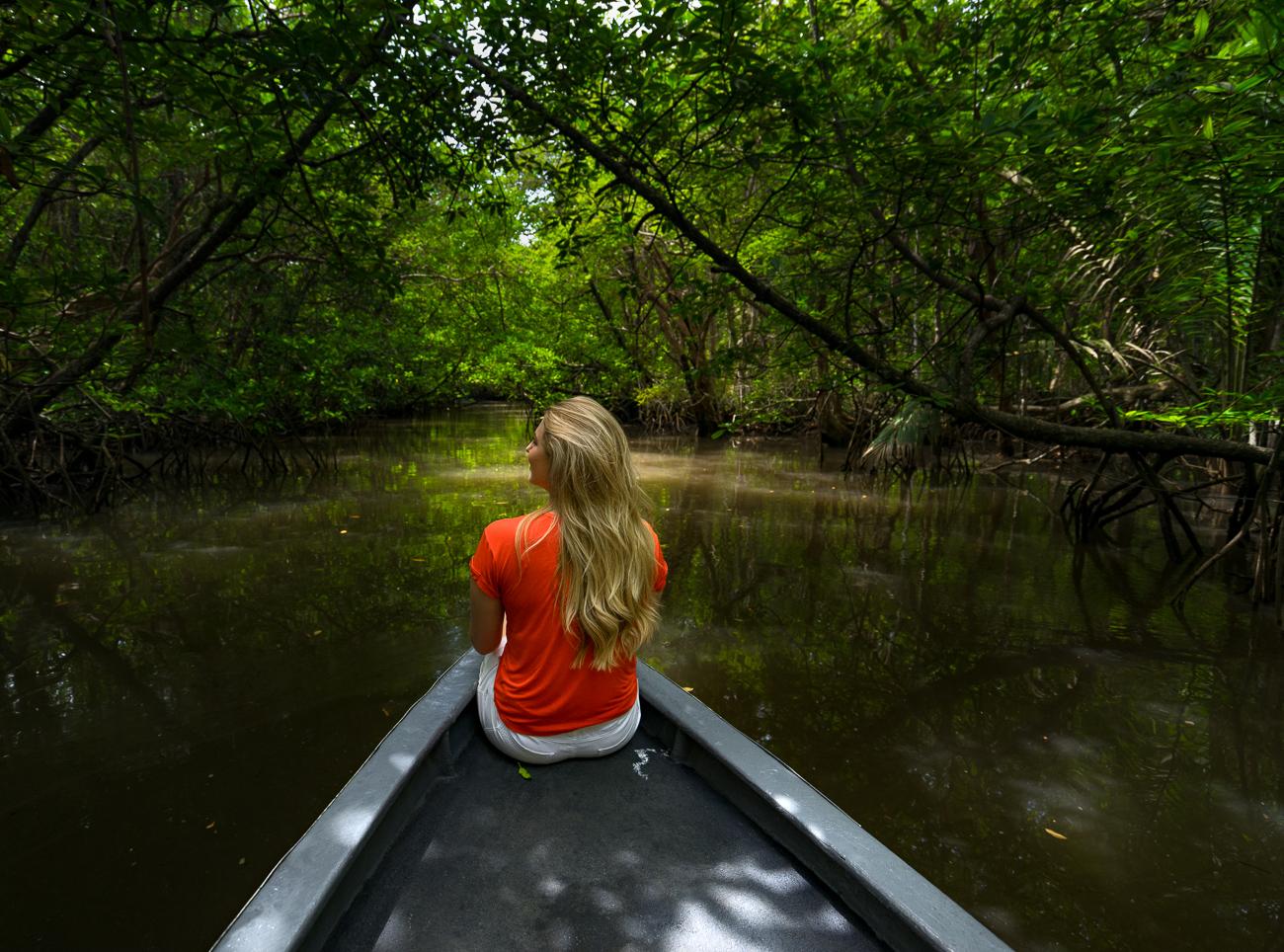 Bintan Mangrove, Hutan Bakau Memukau di Pulau Bintan - Mister Aladin Travel  Discoveries